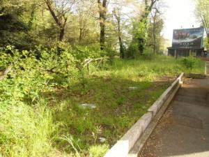 area verde viale Parioli CIMG2382