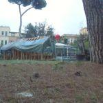 Villa MassimoCIMG3132