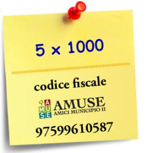 5x1000_Amuse-2-298x300