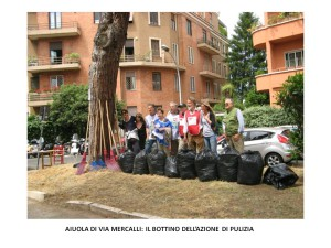 azione di pulizia a via mercalli 16052015