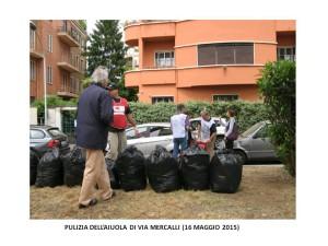 azione di pulizia a via mercalli 16052015 bis
