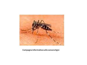 campagna informativa su zanzara tigre